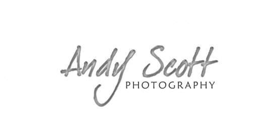 Andy Scott Logo